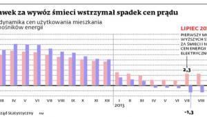 Wzrost stawek za wywóz śmieci wstrzymał spadek cen prądu