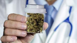 Ustawa zakłada, że preparaty z konopi będą mogły być wytwarzane w aptekach na podstawie recepty od lekarza