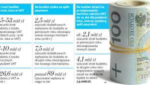 Ile traci budżet na tzw. Luce w VAT