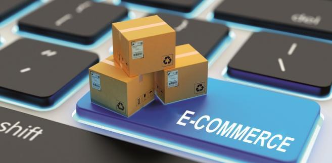 Logistyczna obsługa sklepów internetowych - modele współpracy operatorów logistycznych z rynkiem e-commerce