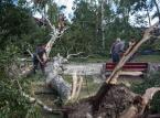 Bochenek: Premier uda się na tereny dotknięte przez nawałnice na Pomorzu