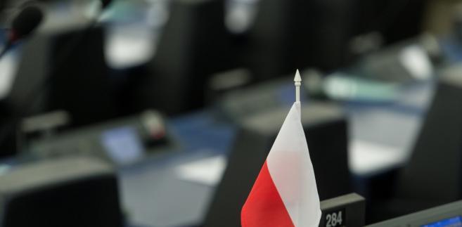 Flaga Polski w PE