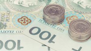 """""""Nie zgodzę się z twierdzeniem, że mniejsze przedsiębiorstwa stracą na wprowadzeniu mechanizmu podzielonej płatności - pisze wiceminister Paweł Gruza w odpowiedzi na interpelację posła Pawła Pudłowskiego w sprawie stosowania płatności split payment."""
