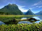Zatoka Milforda - zatoka na Wyspie Południowej w Nowej Zelandii. Ze względu na charakterystykę geologiczną (20 kilometrów długości i wysokie strome brzegi) przypomina typowy fiord.