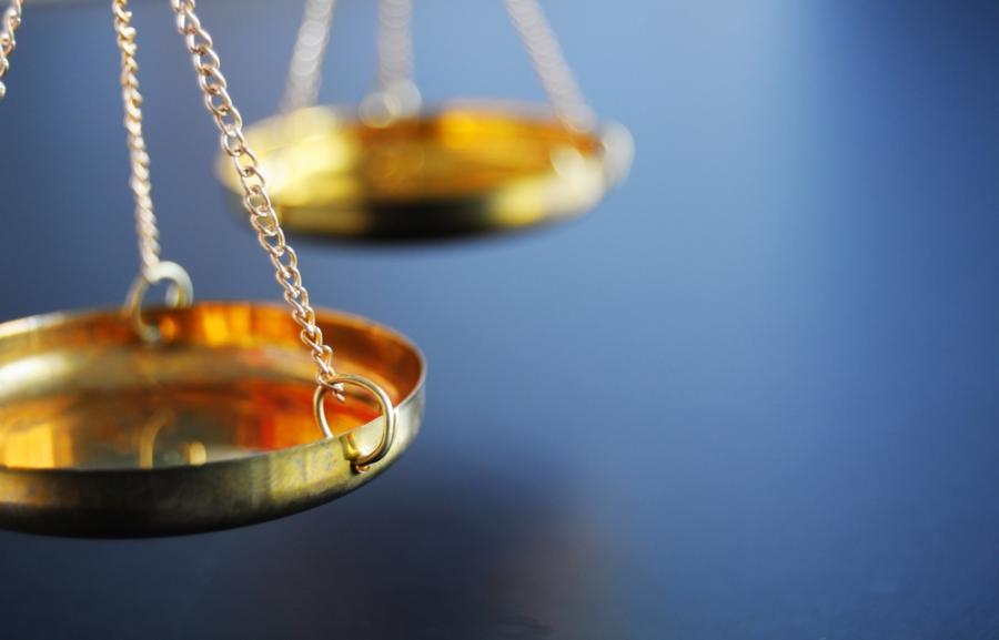 prawo prawnik