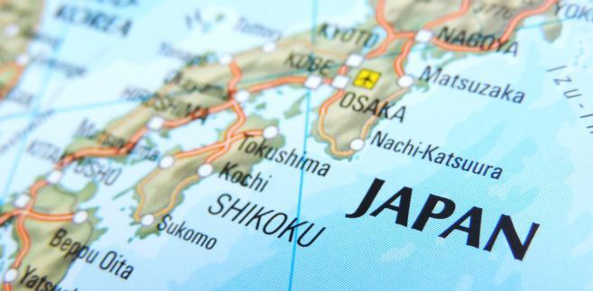 W ubiegłym roku 48 osób zmarło w Japonii w wyniku upałów między majem a wrześniem, przy czym 31 zmarło w lipcu