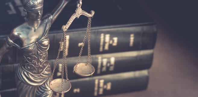 Każdy adwokat zawsze staje niejako w kontrze do rządu tylko po to, żeby bronić pewnych standardów. Opowiadamy się po stronie państwa i demokratycznych zasad, a przeciwnikiem okazuje się wybrana w wyborach władza