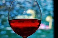 Wino z Polski zdobywa uznanie smakoszy