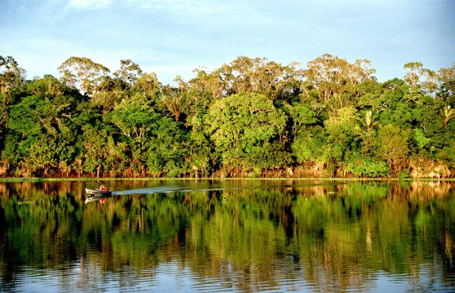 Nowe Cuda Natury - Amazonka Fot. flickr/Andre Deak