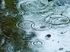 Wody Polskie zbyt pazerne. Za wcześnie chcą opłat od deszczówki