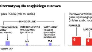 Gaz łupkowy alternatywą dla rosyjskiego surowca
