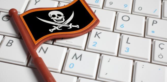 Piractwo internetowe dobija polskich twórców